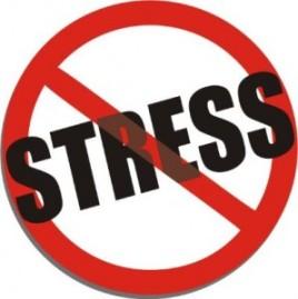 no-stress-298x300